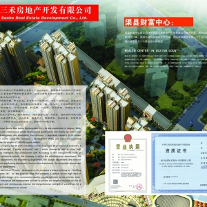公司业绩:房地产开发 The company's performance: real estate development